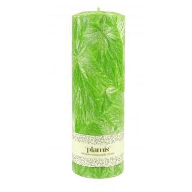 PLAMIS, Свеча из натурального пальмового воска, (высота 200мм, диаметр 67мм)
