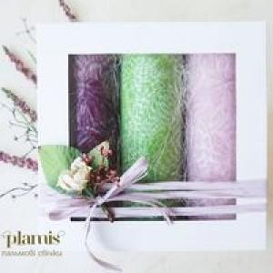 PLAMIS, Подарочный набор свечей из натурального пальмового воска ВЕСЕННЕЕ ДЫХАНИЕ