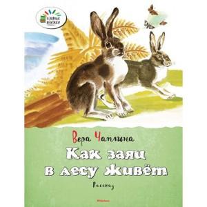 Віра Чапліна, Як заєць в лісі живе. розповідь